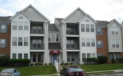 Baltimore County Condo For Sale: 4545 Aspen Mill Road