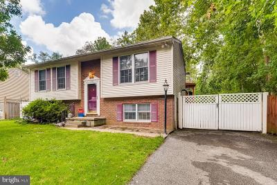 Baltimore County Single Family Home For Sale: 115 Washington Street
