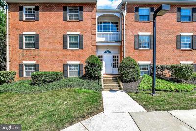 Baltimore County Condo For Sale: 5 Gurteen Court #101