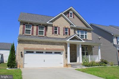 Reisterstown Single Family Home For Sale: 518 Whinstone Drive