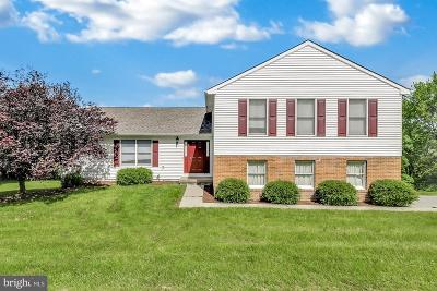 Reisterstown Single Family Home For Sale: 2 Amy Brent Way