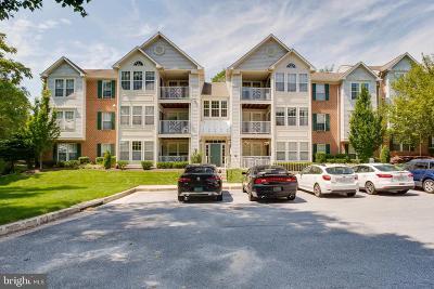 Owings Mills Condo For Sale: 7901 Valley Manor Road #303