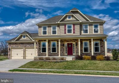Baltimore County Single Family Home For Sale: 1307- B Bluemount