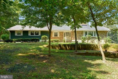 Baltimore Single Family Home For Sale: 5319 Airport Drive
