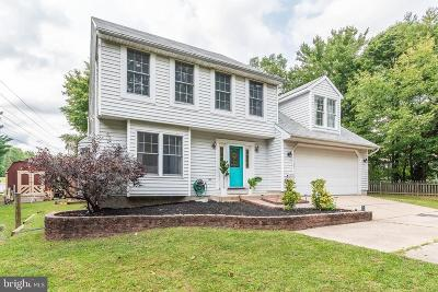 Baltimore Single Family Home For Sale: 9040 Naygall Road