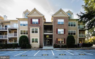 Baltimore County Rental For Rent: 2311 Falls Gable Lane #E