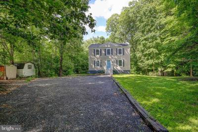 Single Family Home For Sale: 347 Skyview Drive