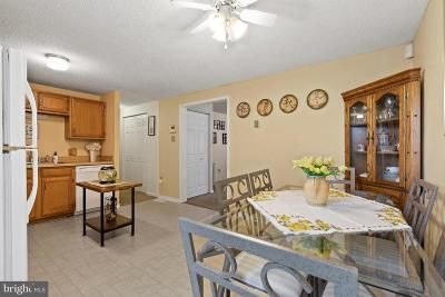 Single Family Home For Sale: 8321 Cedar Lane