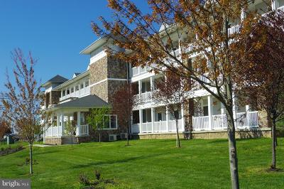 Owens Landing Rental For Rent: 231 Roundhouse Drive #2B