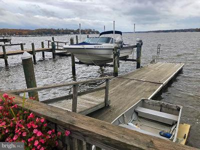 Elkton Single Family Home For Sale: 115 River Road