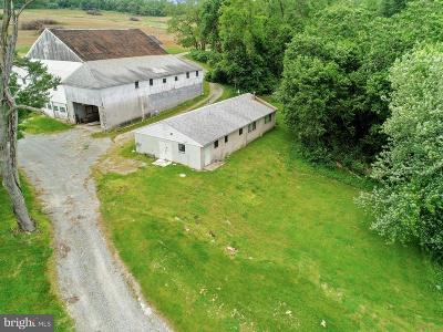 Cecil County Farm For Sale: 64 Balderston Lane