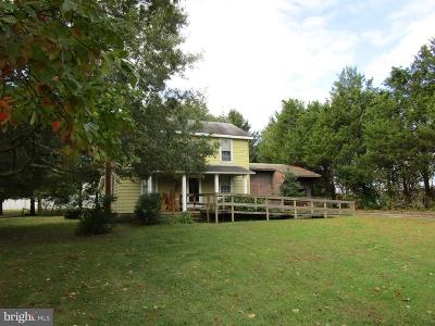 Cecil County Single Family Home For Sale: 1200 Pulaski Highway 1200 E. Pulaski Highway E