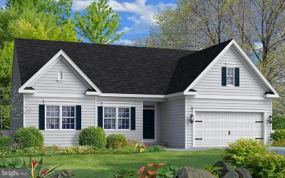 Perryville Single Family Home For Sale: 6 Tiller Farm Lane