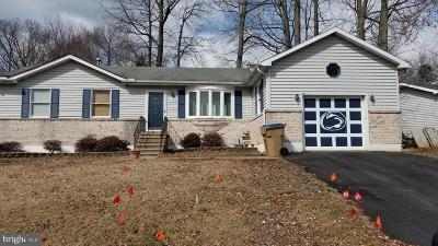Cecil County Single Family Home For Sale: 107 Gray Mount Drive