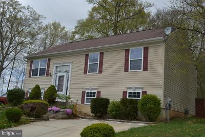 Elkton Single Family Home For Sale: 139 Continental Drive
