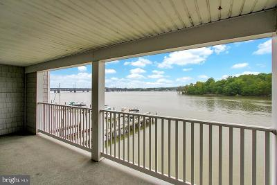 Perryville Condo For Sale: 34 McMullens Wharf #3C