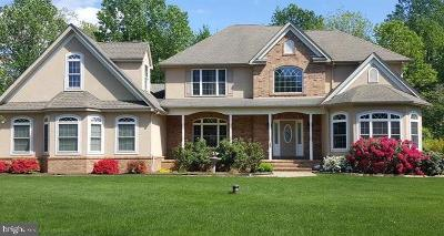 Elkton Single Family Home For Sale: 163 Riverside Drive