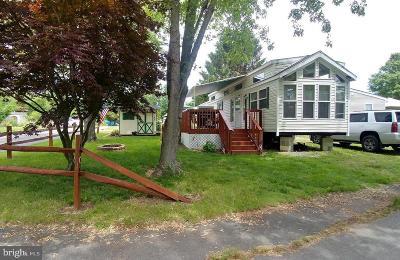 Earleville Single Family Home For Sale: 165, 153 Kasun Lane #GLEN 4