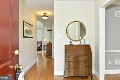 Elkton Single Family Home For Sale: 17 Elk Ranch Park Road