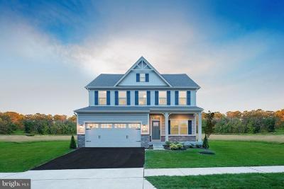 Waldorf Single Family Home For Sale: 8873 Bancroft Drive