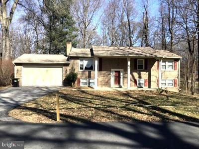Waldorf Single Family Home For Sale: 8758 Paper Birch Court