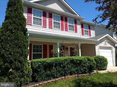 Waldorf Single Family Home For Sale: 3807 Molly Miller Court