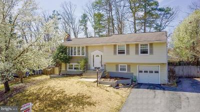 Waldorf Single Family Home For Sale: 4618 Harwich Drive