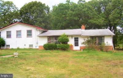 Anne Arundel County, Calvert County, Charles County, Prince Georges County, Saint Marys County Commercial For Sale: 12470 Crain Highway