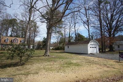 Cobb Island Single Family Home For Sale: 15368 Potomac River Drive