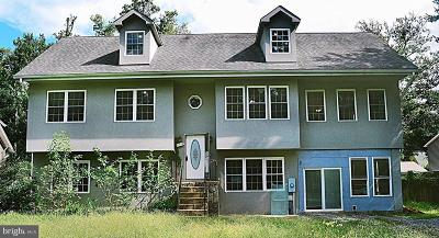 Cobb Island Single Family Home For Sale: 17172 Russell Drive