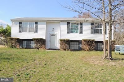 Waldorf Single Family Home For Sale: 10234 Briarwood Place