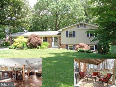 Waldorf Single Family Home For Sale: 3704 Joy Lane
