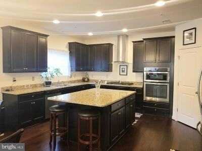 Waldorf Single Family Home For Sale: 12046 Mustard Seed Court