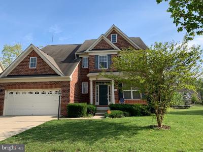 Waldorf Single Family Home For Sale: 4978 Morraine Street
