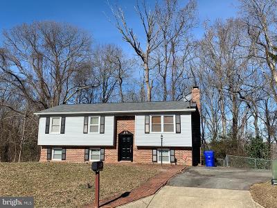 Waldorf Single Family Home For Sale: 2301 Ironwood Drive