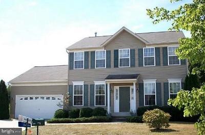Waldorf Single Family Home For Sale: 9855 Wichita Court