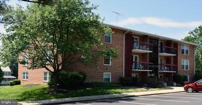 La Plata Single Family Home For Sale: 327 Saint Marys Avenue #7B