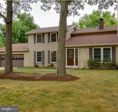 Waldorf Single Family Home For Sale: 2241 Old Bailey Court