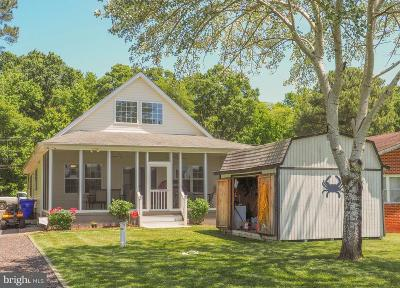 Charles County Single Family Home For Sale: 16077 Cobb Island Road