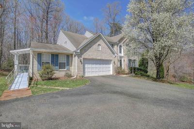 Charles County Single Family Home For Sale: 16610 Clydesdale Place