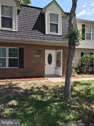 Waldorf Rental For Rent: 4536 Reeves Place #44-K