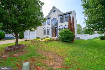 Charles County Single Family Home For Sale: 4834 Castlewood Court