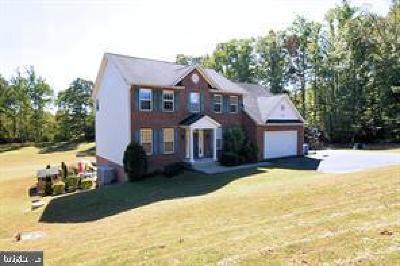 Hughesville Single Family Home For Sale: 16470 Peak Run Place