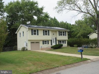 Waldorf Single Family Home For Sale: 5 Ravenglass Road