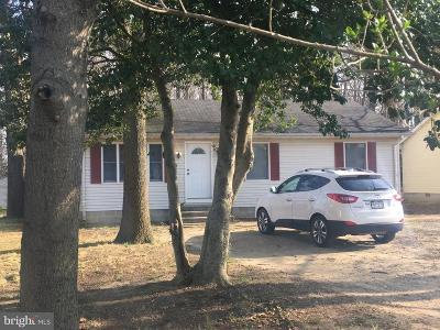 Denton Single Family Home For Sale: 407 Caroline Street
