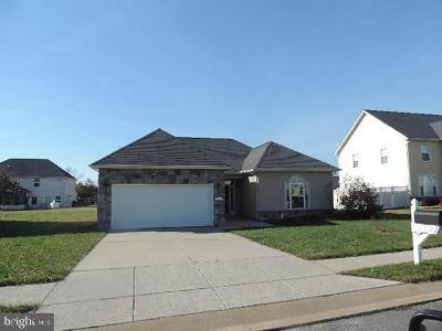 Denton Single Family Home For Sale: 212 Briarwood Circle