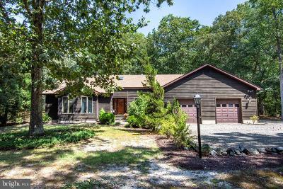 Caroline County Single Family Home For Sale: 25340 Depue Landing Way