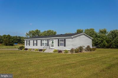 Caroline County Single Family Home For Sale: 26232 Route 313