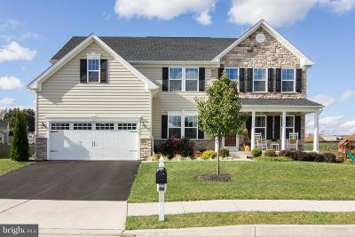Single Family Home For Sale: 878 Amherst Lane