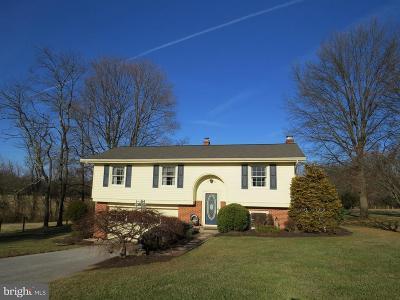 Carroll County Single Family Home For Sale: 3700 Sue Dan Drive